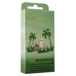 AMOR wild Moments - 12 unidades
