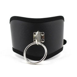 Leather Collar with ring & buckle